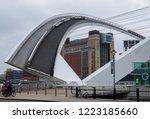 newcastle england  november 6 ... | Shutterstock . vector #1223185660