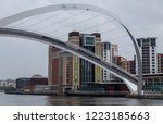 newcastle england  november 6 ... | Shutterstock . vector #1223185663