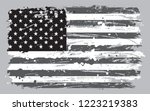 grunge black and white american ... | Shutterstock .eps vector #1223219383