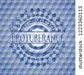 protuberance blue emblem or...   Shutterstock .eps vector #1223360113