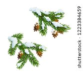 christmas fir and pine tree... | Shutterstock .eps vector #1223384659