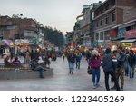 india  monali   march 13  2018  ... | Shutterstock . vector #1223405269