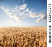 wheat in the farm | Shutterstock . vector #1223413273