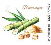 sugar cane with leaves and... | Shutterstock . vector #1223477413