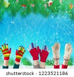 multi colored wool gloves...   Shutterstock . vector #1223521186