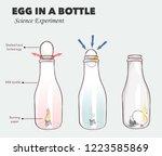 egg in a bottle science... | Shutterstock .eps vector #1223585869
