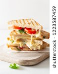 grilled cheese and tomato... | Shutterstock . vector #1223587459