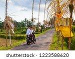 bali  indonesia   may 30  2018  ... | Shutterstock . vector #1223588620