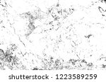 black and white background....   Shutterstock . vector #1223589259