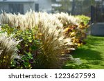 urban photography  a lawn is an ... | Shutterstock . vector #1223627593