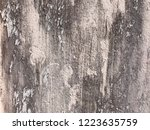 grunge abstract dirty wood wall ... | Shutterstock . vector #1223635759
