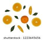 fruits orange slice on white... | Shutterstock . vector #1223645656
