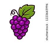 grape vine vector icon in... | Shutterstock .eps vector #1223665996