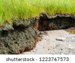 close view of the erosion of a... | Shutterstock . vector #1223767573