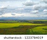 horizon. sunny summer day....   Shutterstock . vector #1223784019