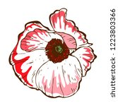 beautiful poppy flower.... | Shutterstock .eps vector #1223803366