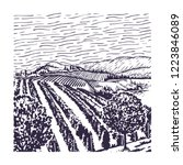 vineyard line art  with rows of ... | Shutterstock .eps vector #1223846089