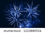 firework at night | Shutterstock . vector #1223880526
