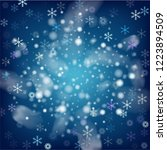 realistic snowfall vector on... | Shutterstock .eps vector #1223894509