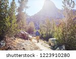 man with hiking equipment... | Shutterstock . vector #1223910280