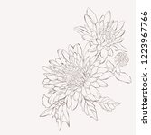 Vector Dahlia Flower. Autumn...