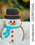 gingerbread for christmas  ... | Shutterstock . vector #1223972263