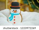 gingerbread for christmas  ... | Shutterstock . vector #1223972269