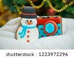 gingerbread for christmas  ... | Shutterstock . vector #1223972296