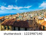 panoramic aerial view of san... | Shutterstock . vector #1223987140