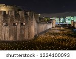 Small photo of London, UK - November 6th 2018: Beyond The Deepening Shadow at the Tower of London - an installation of 10,000 flames to commemorate the end of the First World War.