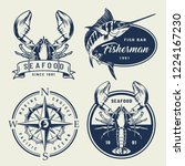 vintage sea emblems collection... | Shutterstock .eps vector #1224167230