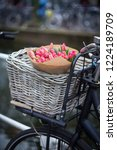 basket with tulips on a bike at ... | Shutterstock . vector #1224189709