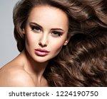 beautiful caucasian woman with... | Shutterstock . vector #1224190750
