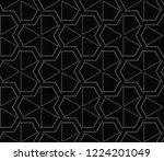 seamless modern vector...   Shutterstock .eps vector #1224201049