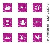 chromosome icons set. grunge... | Shutterstock .eps vector #1224233143
