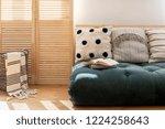 wooden screen and scandinavian...   Shutterstock . vector #1224258643