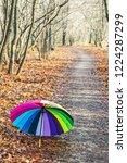 multicolored umbrella lies on... | Shutterstock . vector #1224287299