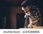 dust sawdust chip hobby leisure ...   Shutterstock . vector #1224288886