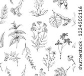 seamless vector pattern of... | Shutterstock .eps vector #1224302116