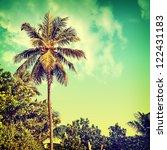 vintage palm background | Shutterstock . vector #122431183