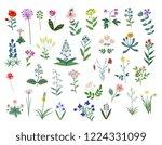 Decorative Wild Flowers Vector...