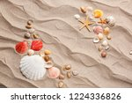 composition with different sea... | Shutterstock . vector #1224336826