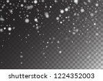 vector storm trail winter... | Shutterstock .eps vector #1224352003