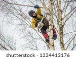 arborist in safety harness... | Shutterstock . vector #1224413176
