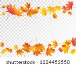 maple leaves vector  autumn... | Shutterstock .eps vector #1224453550
