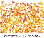 oak  maple  wild ash rowan... | Shutterstock .eps vector #1224453559