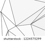 asymmetrical texture with... | Shutterstock .eps vector #1224575299