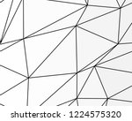 asymmetrical texture with... | Shutterstock .eps vector #1224575320