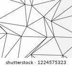 asymmetrical texture with... | Shutterstock .eps vector #1224575323