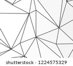 asymmetrical texture with... | Shutterstock .eps vector #1224575329